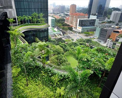 شرکت فضای سبز