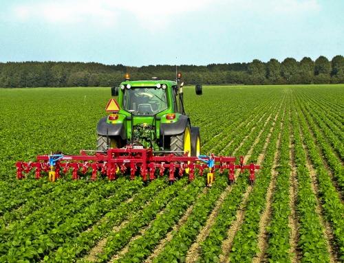 ثبت شرکت کشاورزی در کرج